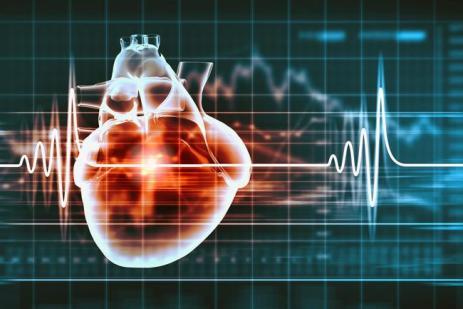 cardio-prediccion