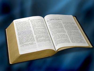 011 La Biblia Ojarbol