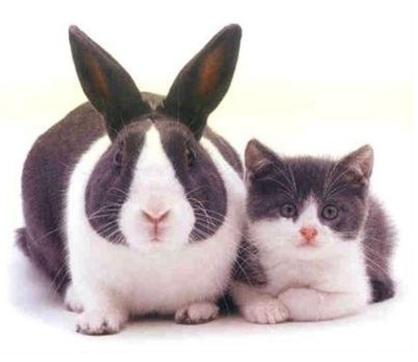 cloning-results-may-vary