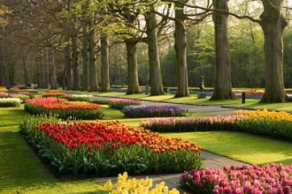 THE KEUKENHOF GARDENS, NETHERLANDS, SPRING. OVERVIEW OF TULIPS IN BEDS IN LATE EVENING