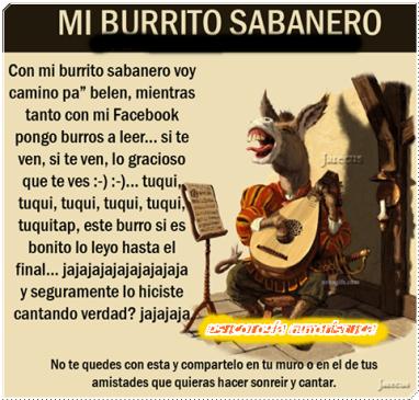mi-burrito-sabanero